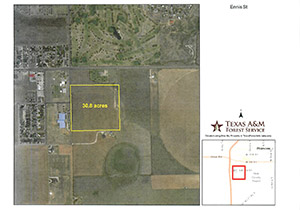 Platt Map for South Ennis Acreage